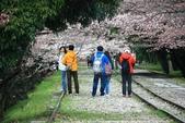 20120406 重返京都:018. 眾人歡欣喜悅的背影.JPG