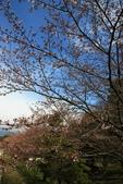 20120406 重返京都:004. 我愛藍天~.JPG