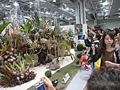 20101114 台北花博初體驗:18. 幾乎是人手一台相機~拍拍拍.JPG