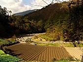 河馬野山農園:DSC06320.jpg