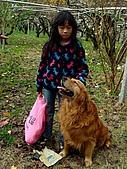 河馬野山農園:DSC06358.jpg