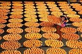 新埔柿餅節外拍:DSC_0084.JPG
