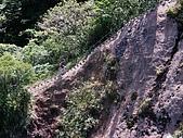 慈母峰與普陀山:SANY0340.JPG