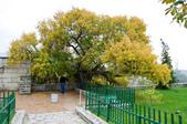 2014土耳其十二日遊 - 番紅花城高地:DSC_7455.jpg