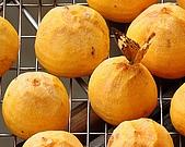 新埔柿餅節外拍:DSC_0140.jpg