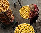 新埔柿餅節外拍:DSC_0176.jpg
