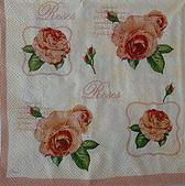 餐巾紙:CIMG3960_大小 .JPG