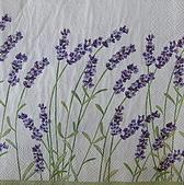 餐巾紙:CIMG0424_大小 .JPG