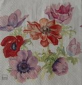餐巾紙:CIMG3100_大小 .jpg