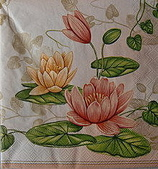 餐巾紙:CIMG2545_大小 .JPG