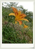 旅遊相片:CIMG8570-1.jpg