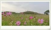 旅遊相片:CIMG8175.jpg