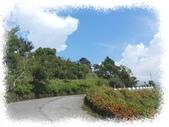 旅遊相片:DSCN0801.JPG
