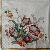餐巾紙:CIMG4959_大小 .jpg