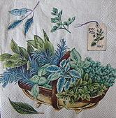 餐巾紙:CIMG0420_大小 .JPG