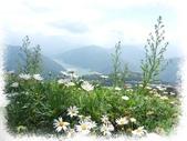 旅遊相片:DSCN0793.JPG