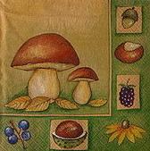 餐巾紙:CIMG3102_大小 .jpg
