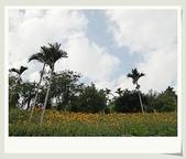 旅遊相片:CIMG8623.jpg