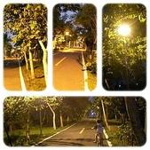 旅遊相片:page1.jpg