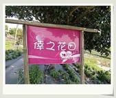 旅遊相片:CIMG6221.jpg