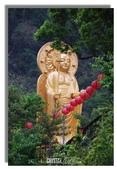 早安!花蓮~遊山:綠意,紅燈籠,金菩薩