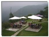 紫色午後:咖啡屋後草坪上納涼賞景