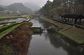 秋遊後慈湖:蔣公銅像公園裡橋上拍的景致