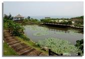 早安!花蓮~觀海:觀海餐廳旁的荷花池