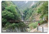 早安!花蓮~遊山:白楊步道吊橋遠觀