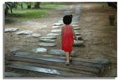 雨中的再度邂逅--尖石鄉六號花園:DSC_0339.jpg