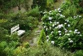 雨中的再度邂逅--尖石鄉六號花園:六號花園外觀06