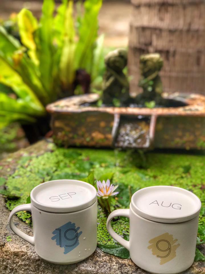 雨中的再度邂逅--尖石鄉六號花園:080901.jpg