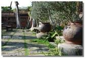 華陶窯的自在之美:陶與植物的對話