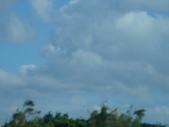 觀音白沙岬燈塔:1727112168.jpg