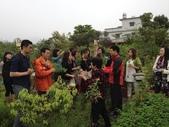 103年4月23日宜蘭縣羅東鎮北成國小到大安藥園休閒農場舉辦教師環境教育進修及健康促進活動:IMG_0048.JPG