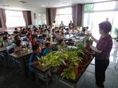 大佑安親班快樂的戶外教學活動於8/7在大安藥園休閒農場圓滿結束:DSC06840.JPG