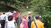 2014年6月15日宜蘭縣藥用植物學會與大安藥園休閒農場到宜蘭大學實驗林場進行戶外參觀教學活動:DSC05134.JPG