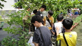 103年6月30日宜蘭縣蘇澳國中七年級師生到大安藥園休閒農場進行戶外參訪活動:DSC05407.JPG