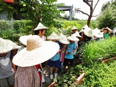 國華安親班快樂的戶外教學活動於7/17在大安藥園休閒農場圓滿結束:DSC06602.JPG