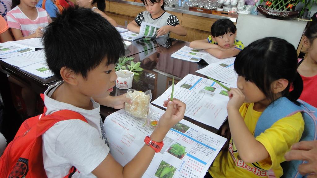 103年8月12日羅東小哈佛補習班到大安藥園休閒農場進行戶外教學活動:DSC06379.JPG