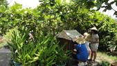 103年7月16日宜蘭縣壯圍鄉私立大佑安親班到大安藥園休閒農場進行夏令營一日遊活動:DSC05792.JPG
