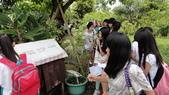 103年6月30日宜蘭縣蘇澳國中七年級師生到大安藥園休閒農場進行戶外參訪活動:DSC05400.JPG