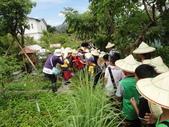 大佑安親班快樂的戶外教學活動於8/7在大安藥園休閒農場圓滿結束:DSC06891.JPG