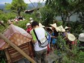 大佑安親班快樂的戶外教學活動於8/7在大安藥園休閒農場圓滿結束:DSC06893.JPG
