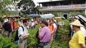2014年6月8日板橋中醫社大170人到大安藥園休閒農場進行參訪活動:DSC04812.JPG