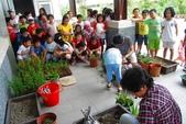 小太陽補習班快樂的戶外教學活動在大安藥園休閒農場圓滿結束-2012.08.09:DSC_2852.JPG