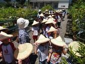 大蘋果補習班難忘的戶外教學活動於8/14在大安藥園休閒農場圓滿結束:DSC07343.JPG