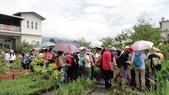 2014年6月8日板橋中醫社大170人到大安藥園休閒農場進行參訪活動:DSC04813.JPG