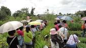 2014年6月8日板橋中醫社大170人到大安藥園休閒農場進行參訪活動:DSC04820.JPG