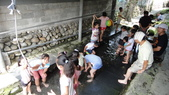 103年8月8日宜蘭市私立安康幼兒園到大安藥園休閒農場進行戶外教學活動:DSC06347.JPG